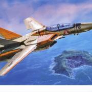 VF-1D